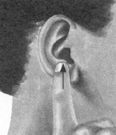 耳鸣-耳痛