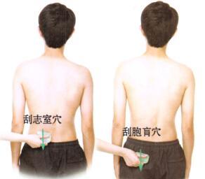 前列腺炎-前列腺肥大