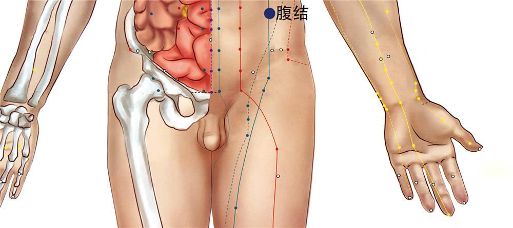 腹结穴位置图