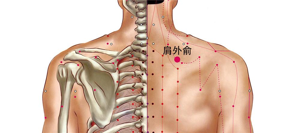 肩外俞穴位置图