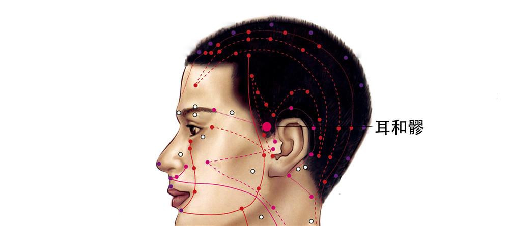 耳和髎穴位置图