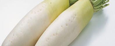 冬天吃什么有助于和胃健脾?