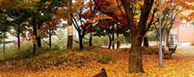 秋天如何养生?