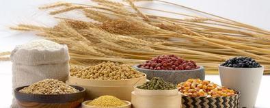 五谷杂粮怎么吃养生?——小麦