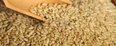 五谷杂粮怎么吃养生?——糙米