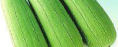 丝瓜的养生功效和饮食搭配