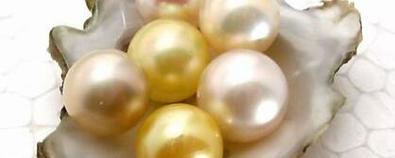 珍珠美容功效大 如何做看这里