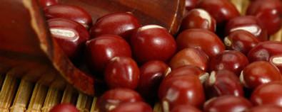 肾炎水肿太可怕 巧用红豆摆脱它