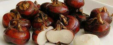 秋冬季养生怎能少了它 药食两用价值高