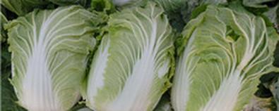 """最家常的""""长寿菜"""" 抗癌降三高必吃"""