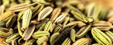 小茴香的3种妙用,帮你吃出美味和健康