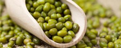 绿豆的功效与作用及绿豆不能和什么一起...