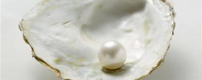 珍珠的功效与作用-禁忌-食用方法-怎...