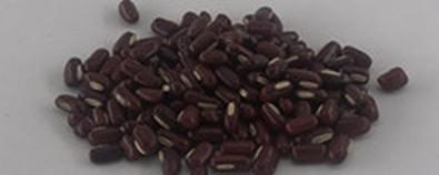 赤小豆的食用方法-怎么吃-副作用