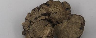 川芎的功效与作用及禁忌-食用方法-怎...