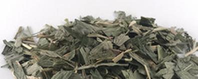 中药淡竹叶的功效与作用