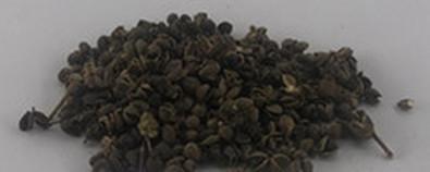 花椒的功效与作用及禁忌-食用方法-怎...