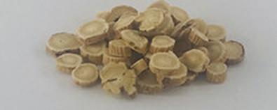 生黄芪对治疗慢性肾炎的作用