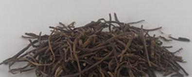 中药紫菀的功效与作用
